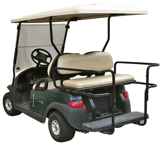 Assistenza Golf Car